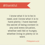 Amber_Hurdle_Thankful